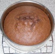 Schoko_Kokos_Torte_9