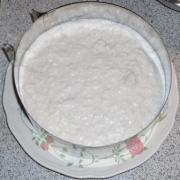Schoko_Kokos_Torte_13