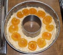Aprikosenmarmorkuchen_6