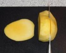 Mangosorbet_5
