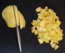 Mangosorbet_6
